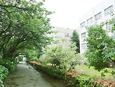 東邦大学(船橋市所在)