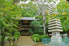 大本山中山法華経寺