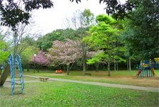 日吉台中央公園