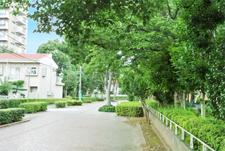 西白井の緑道