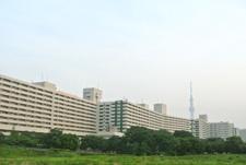 隅田川沿いのマンション群