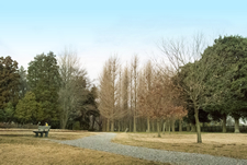 村上緑地公園